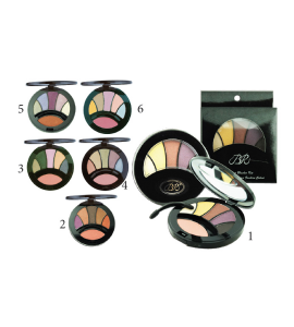 4 Eyeshadow & 1 Blush (0203A) BR (one piece)